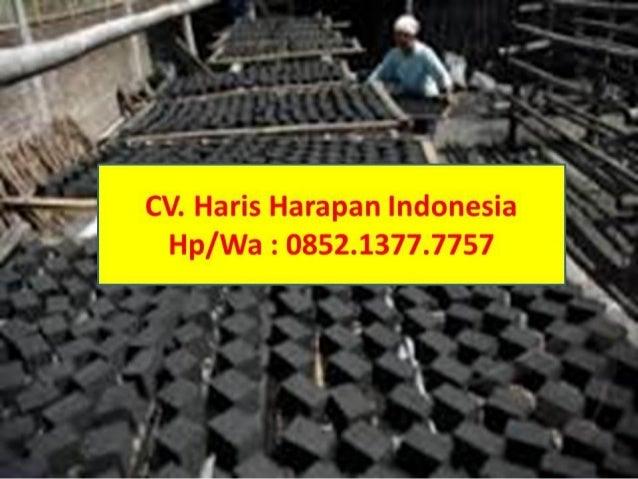 Call/WA: 0852.1377.7757, Jual arang batok kelapa / sell coconut shell chorcoal