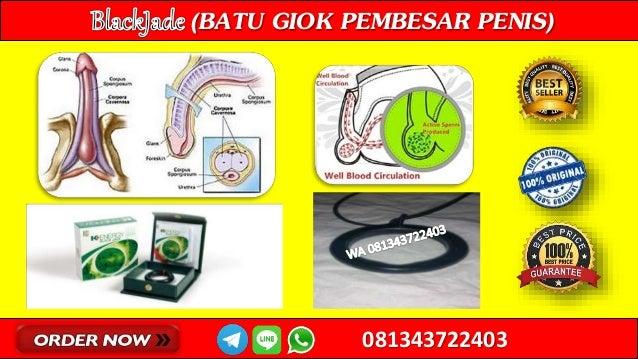 jual toko penirium mebidangro bigcbit com apotek hammer of thor