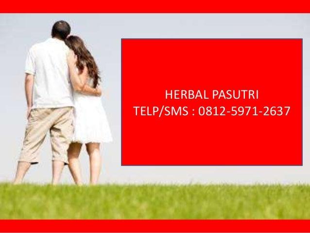 HERBAL PASUTRI TELP/SMS : 0812-5971-2637