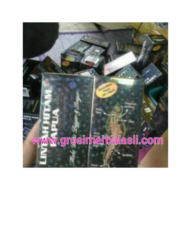 titan gel jual minyak lintah di medan shop vimaxbandung info