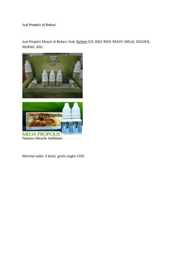 Jual Propolis di Bekasi Jual Propolis Murah di Bekasi. Hub: Bahren 021 9502 4559. READY: MELIA, GOLDEN, MURAH, ASLI. Minim...
