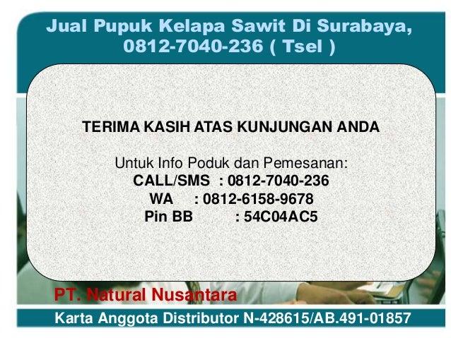 Jual Pupuk Kelapa Sawit Di Surabaya c75c14db76