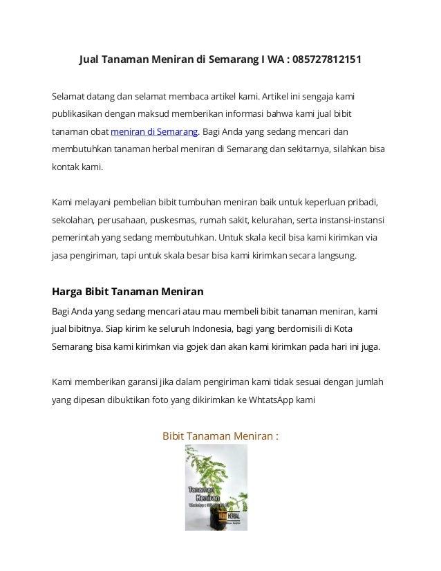 Penjual Tanaman Obat Meniran Di Semarang I Wa 085727812151