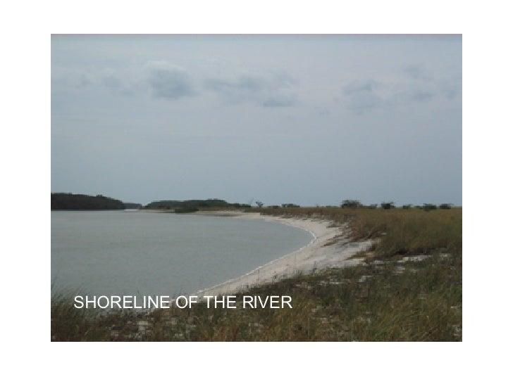 SHORELINE OF THE RIVER