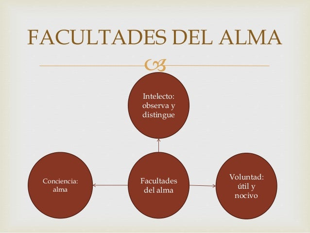  Se divide en tres pasos:  Distribuir asignaturas de acuerdo a la edad  Cada trabajo se gradué cuidadosamente  reparti...