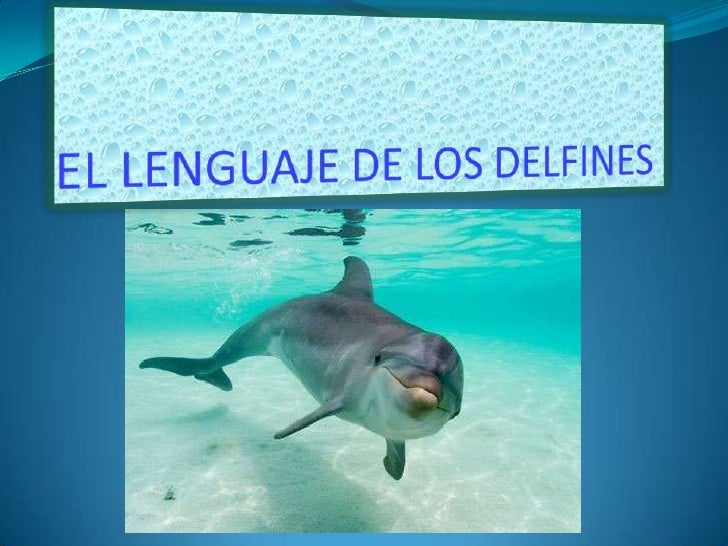 EL LENGUAJE DE LOS DELFINES<br />