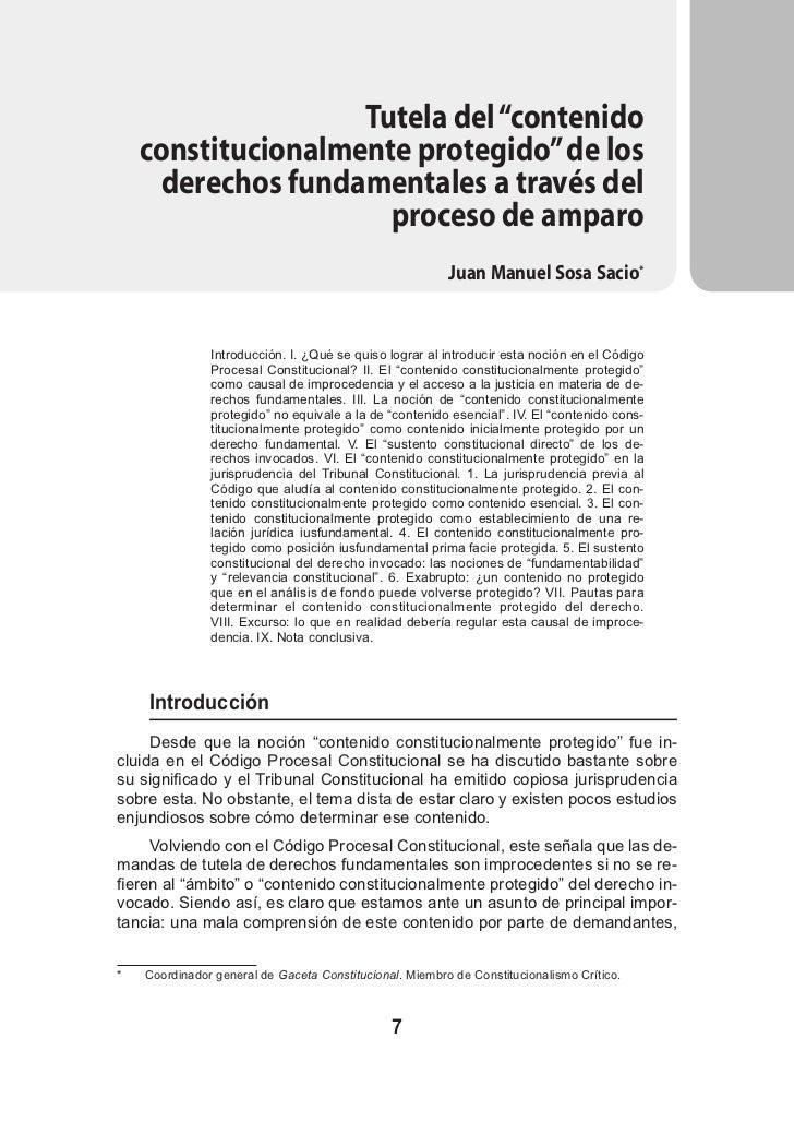 """Tutela del """"contenido     constitucionalmente protegido"""" de los       derechos fundamentales a través del                 ..."""