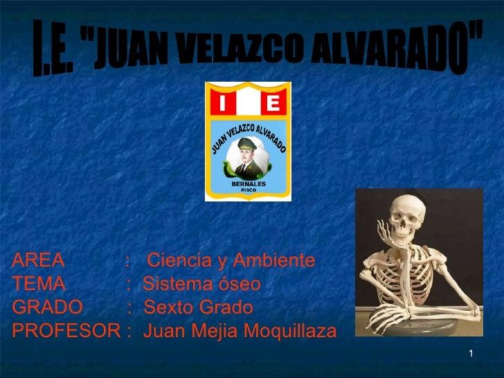 """AREA  :  Ciencia y Ambiente TEMA  :  Sistema óseo GRADO  :  Sexto Grado PROFESOR :  Juan Mejia Moquillaza I.E. """"JUAN ..."""