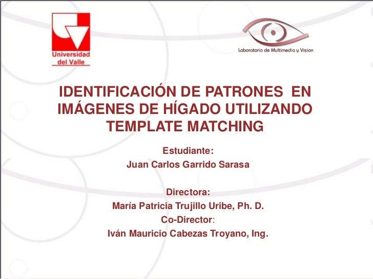 IDENTIFICACIÓN DE PATRONES ENIMÁGENES DE HÍGADO UTILIZANDO      TEMPLATE MATCHING                Estudiante:         Juan ...