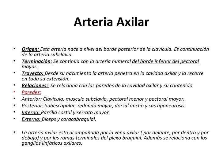 Arteria Axilar <ul><li>Origen:  Esta arteria nace a nivel del borde posterior de la clavícula. Es continuación de la arter...