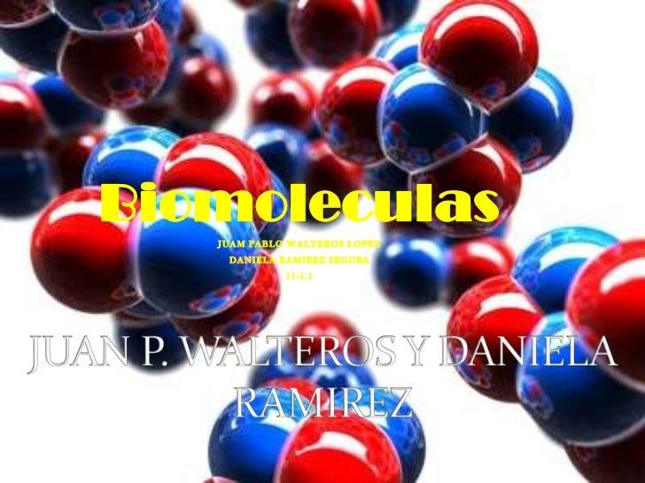 JUAN P. WALTEROS Y DANIELA RAMIREZ<br />Biomoleculas<br />JUAM PABLO WALTEROS LOPEZ<br />DANIELA RAMIREZ SEGURA<br />11-1....