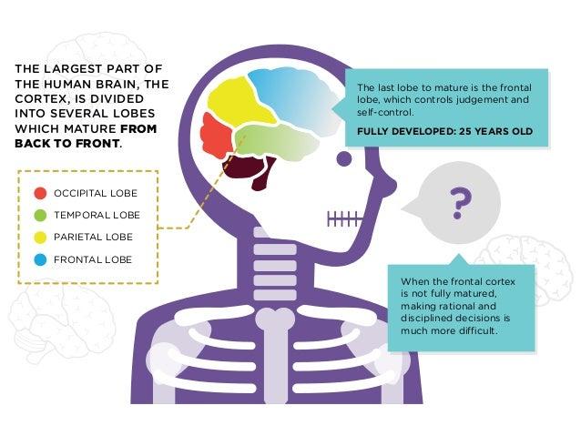 Maturity of the brain