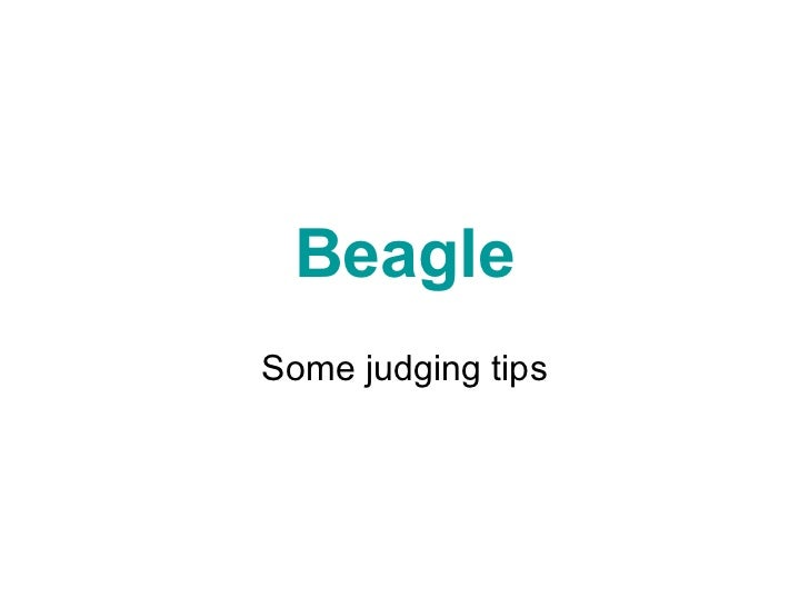 Beagle Some judging tips