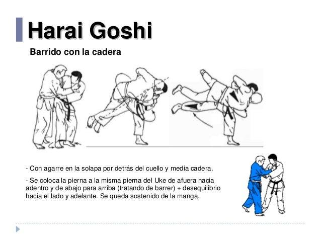 Resultado de imagen de harai goshi combinaciones