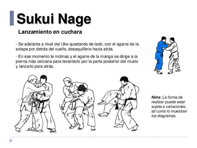 manual de jiu jitsu pdf