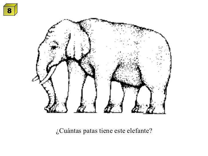 ¿Cuántas patas tiene este elefante? 8
