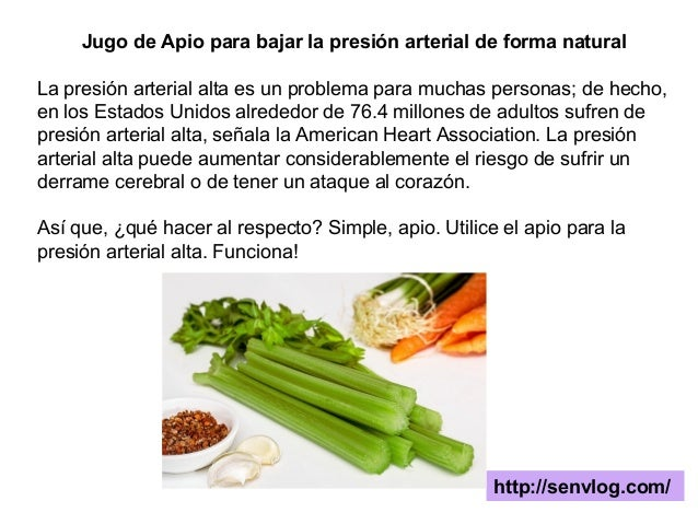 Jugo de apio para bajar la presi n arterial de forma natural - Alimentos para la hipertension alta ...