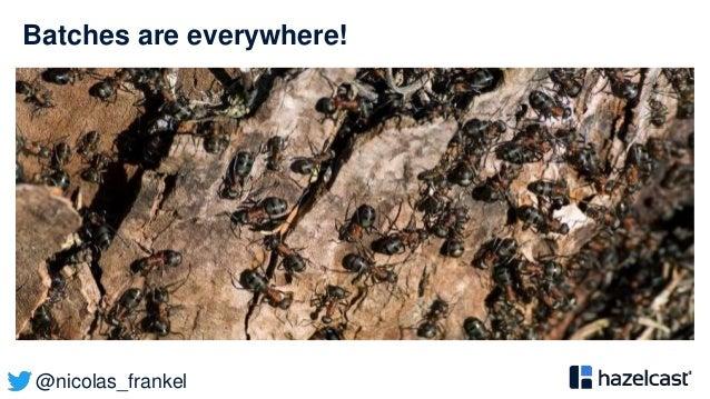 @nicolas_frankel Batches are everywhere!