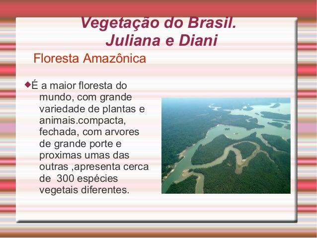 Vegetação do Brasil.Juliana e DianiFloresta AmazônicaÉ a maior floresta domundo, com grandevariedade de plantas eanimais....