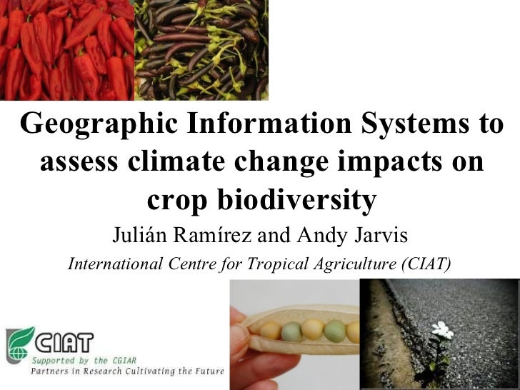 Geographic Information Systems to assess climate change impacts on crop biodiversity Julián Ramírez and Andy Jarvis Intern...