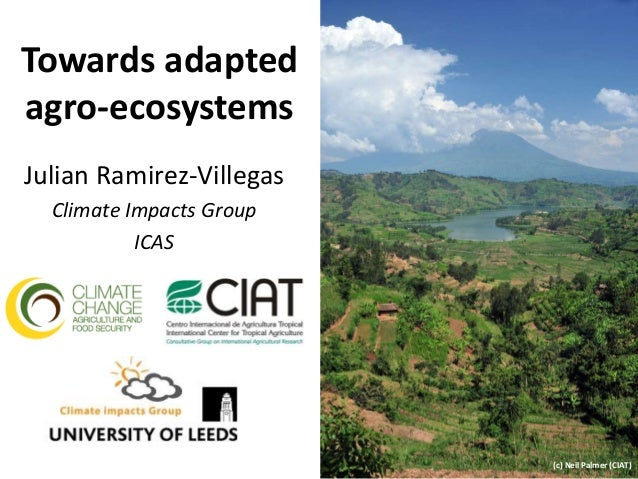 Towards adapted agro-ecosystems Julian Ramirez-Villegas Climate Impacts Group ICAS (c) Neil Palmer (CIAT)