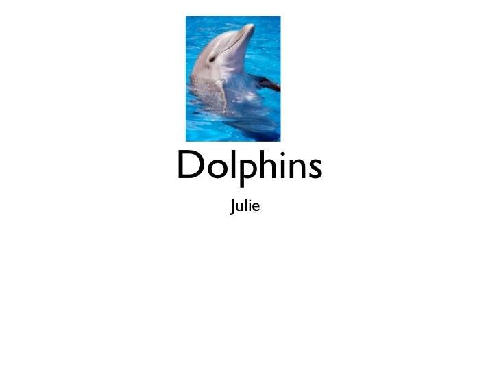 Dolphins   Julie