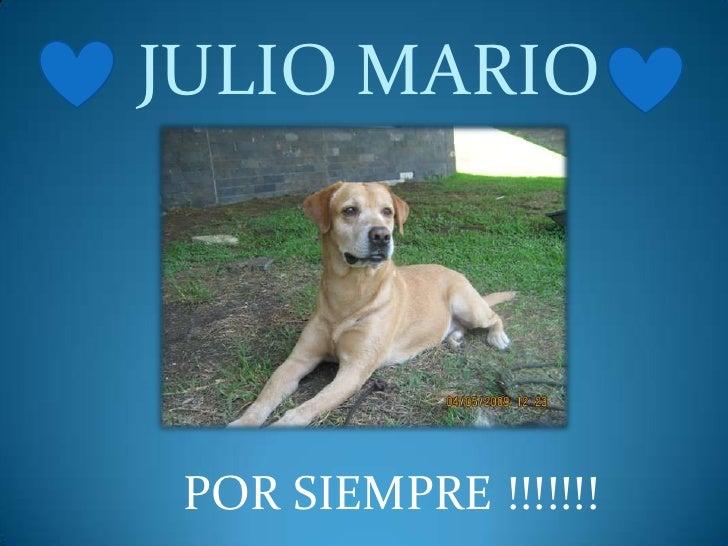 JULIO MARIO<br />POR SIEMPRE !!!!!!! <br />