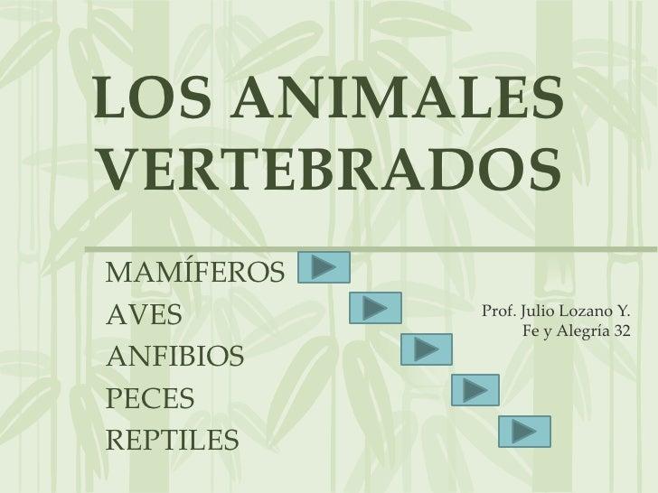 LOS ANIMALES VERTEBRADOS MAMÍFEROS AVES        Prof. Julio Lozano Y.                   Fe y Alegría 32 ANFIBIOS PECES REPT...