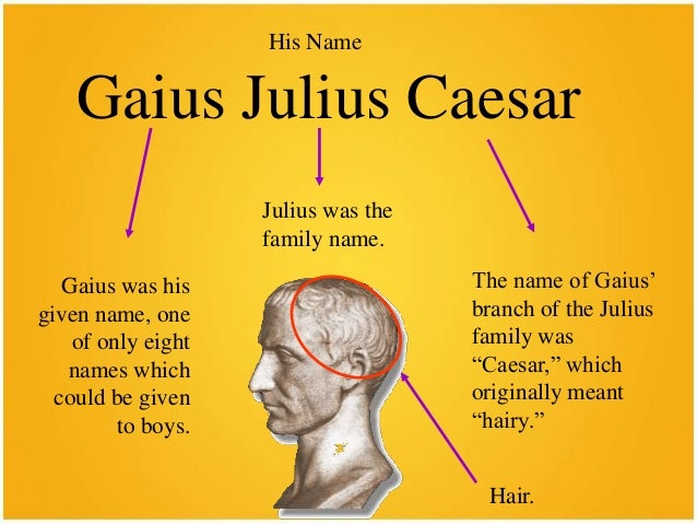 tragedy of julius caesar essay Need writing essay about tragedy of julius caesar order your personal essay and have a+ grades or get access to database of 129 tragedy of julius caesar essays.