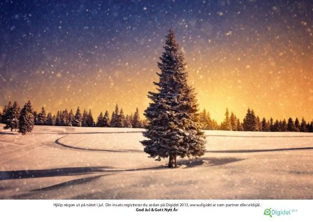 Hjälp någon ut på nätet i jul. Din insats registrerar du sedan på Digidel 2013, www.digidel.se som partner eller eldsjäl. ...
