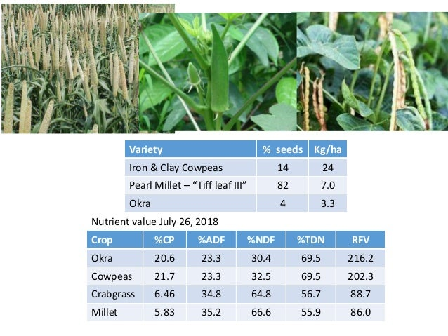 Year 1 cover crop establishment NTCC planted on May 28-30, 2016 TillCC planted on June 14, 2016