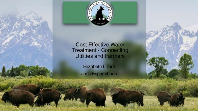 Cost Effective Water Treatment - Connecting Utilities and Farmers Elizabeth Lillard Jess Espenshade