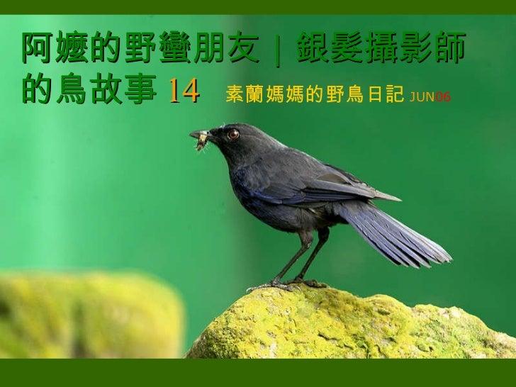 阿嬤的野蠻朋友 銀髮攝影師的鳥故事 14   素蘭媽媽的野鳥日記 JUN 06