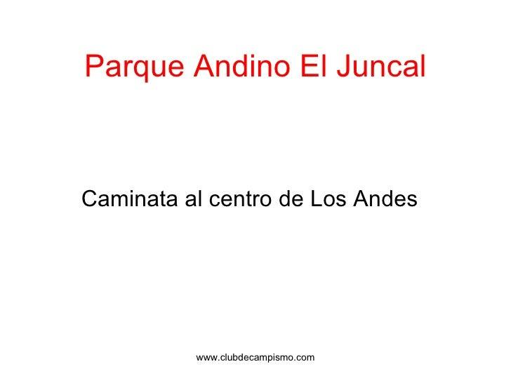 Parque Andino El Juncal <ul><li>Caminata al centro de Los Andes </li></ul>www.clubdecampismo.com