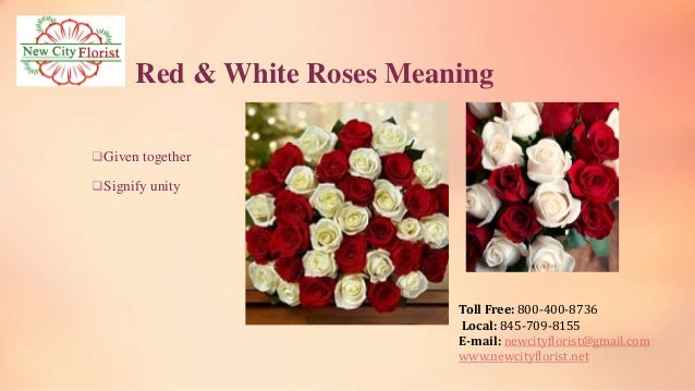 Pictures of Red And White Roses Together images