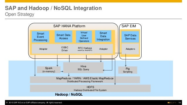 Leveraging SAP, Hadoop, and Big Data to Redefine Business