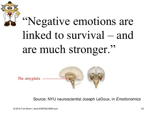 """23 Source: NYU neuroscientist Joseph LeDoux, in Emotionomics """"Negative emotions are linked to survival – and are much stro..."""