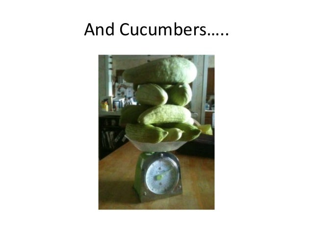 And Cucumbers…..