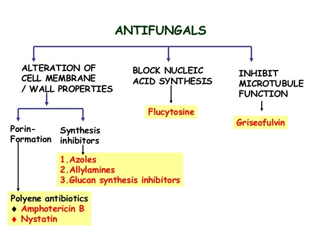 undecylenic acid mechanism of action
