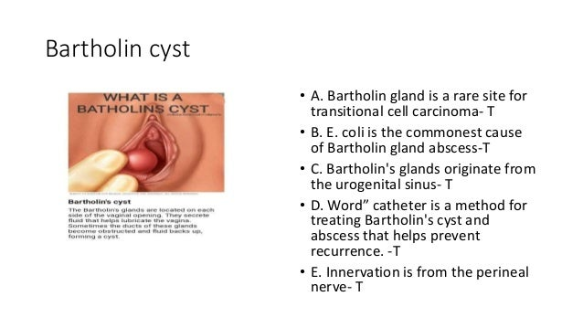 Bartholin cyst • A. Bartholin gland is a rare site for transitional cell carcinoma- T • B. E. coli is the commonest cause ...
