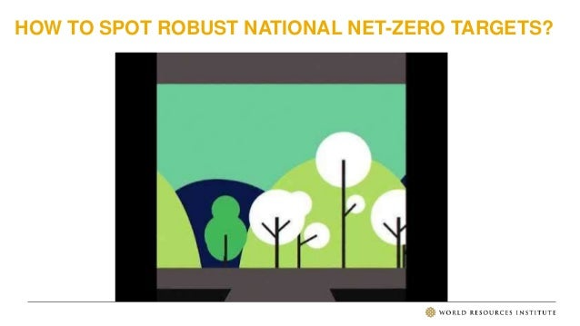 HOW TO SPOT ROBUST NATIONAL NET-ZERO TARGETS?