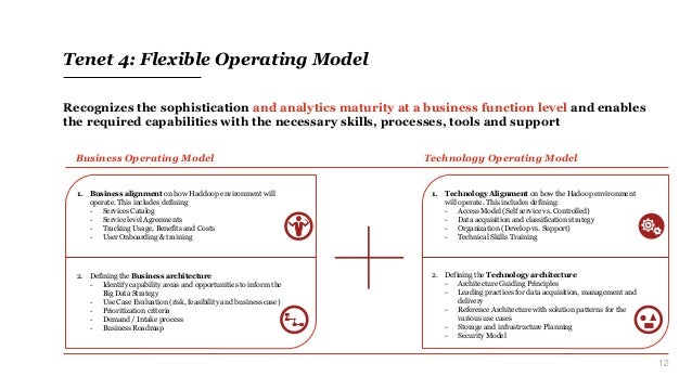 12 Tenet 4: Flexible Operating Model Recognizes the sophistication and analytics maturity at a business function level and...