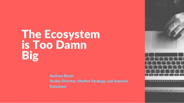 The Ecosystem is Too Damn Big Andrew Brust Senior Director, Market Strategy and Analysis Datameer