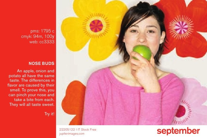 pms: 1795 c         cmyk: 94m, 100y            web: cc3333                NOSE BUDS       an apple, onion and  potato all ...