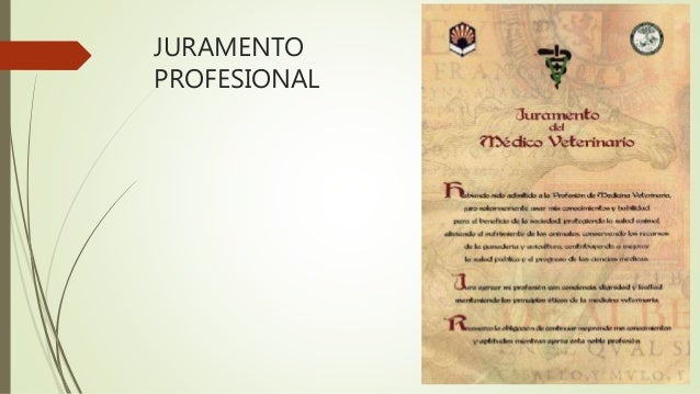 Ejemplos de juramentos profesionales de forex tr property investment trust ordinary shares