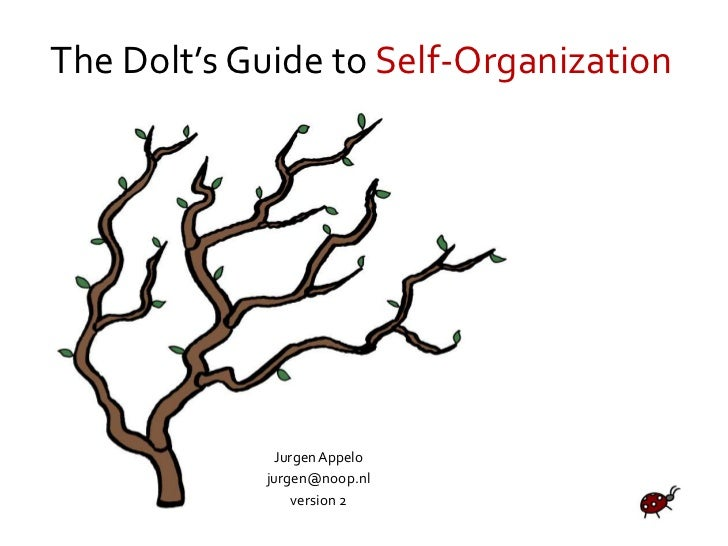 The Dolt's Guide to Self-Organization<br />Jurgen Appelo<br />jurgen@noop.nl<br />version 2<br />
