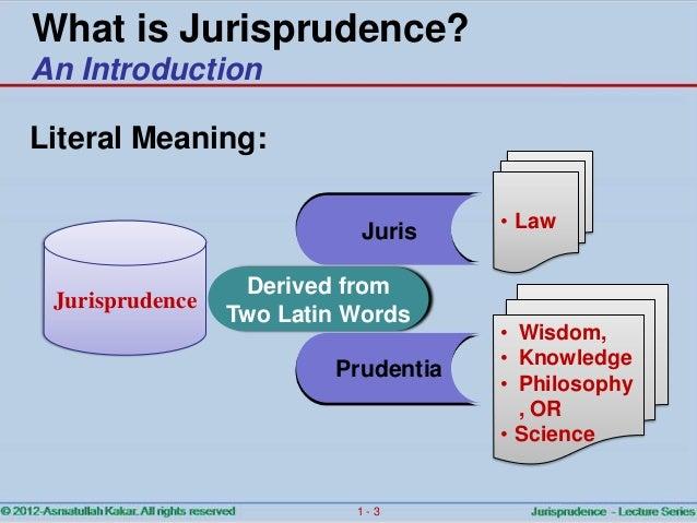 Jurisprudence   ch.01 introduction Slide 3