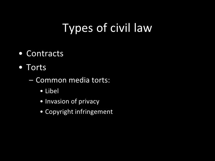 The American legal system: An overview