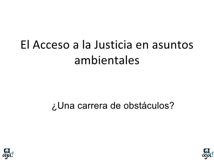 El Acceso a la Justicia en asuntos ambientales ¿Una carrera de obstáculos?