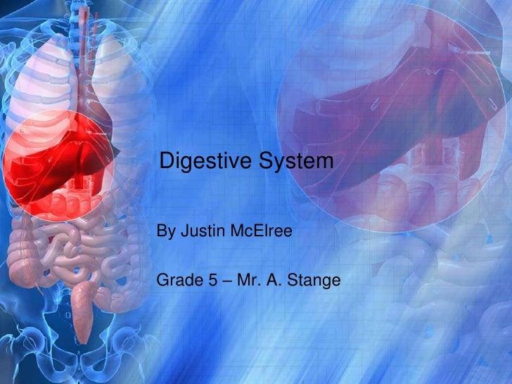 Digestive System<br />By Justin McElree<br />Grade 5 – Mr. A. Stange<br />